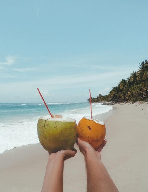 sri lanka beaches koggala coconuts