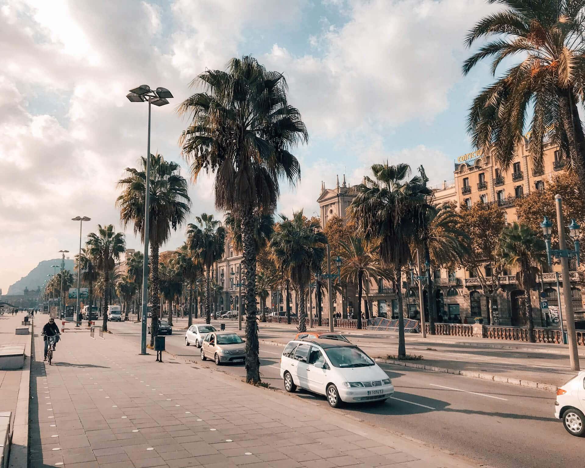 barcelona city trip guide barceloneta