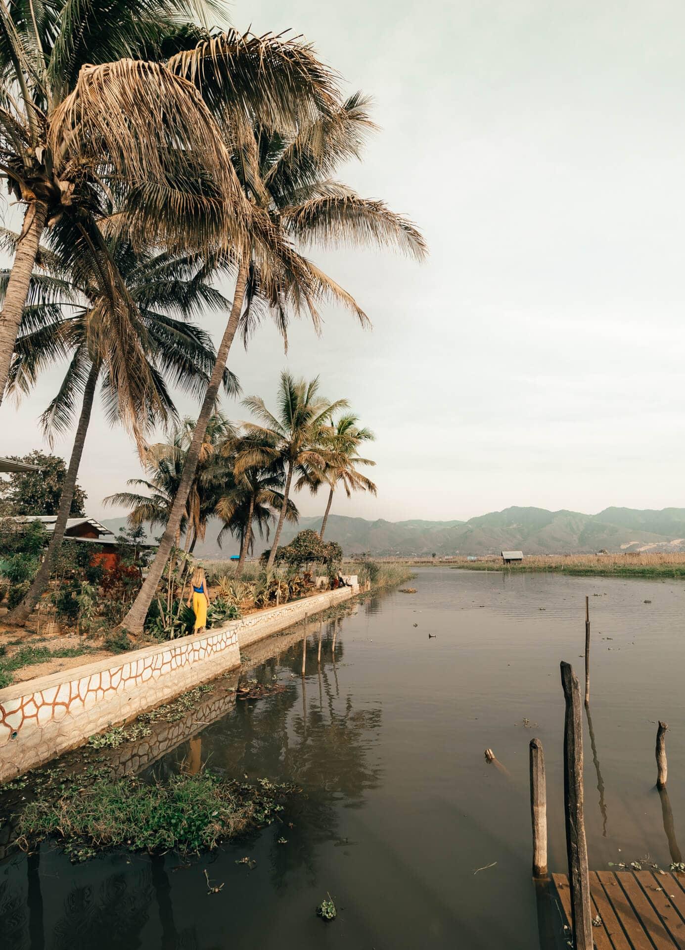things to do inle Nga Phe Kyaung palms