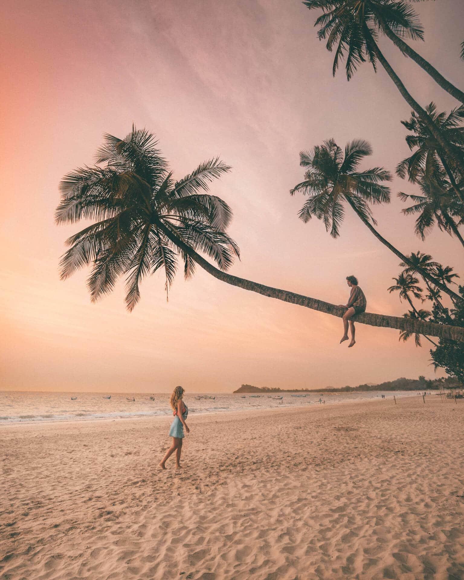 ngapali most beautiful beach sunset palm