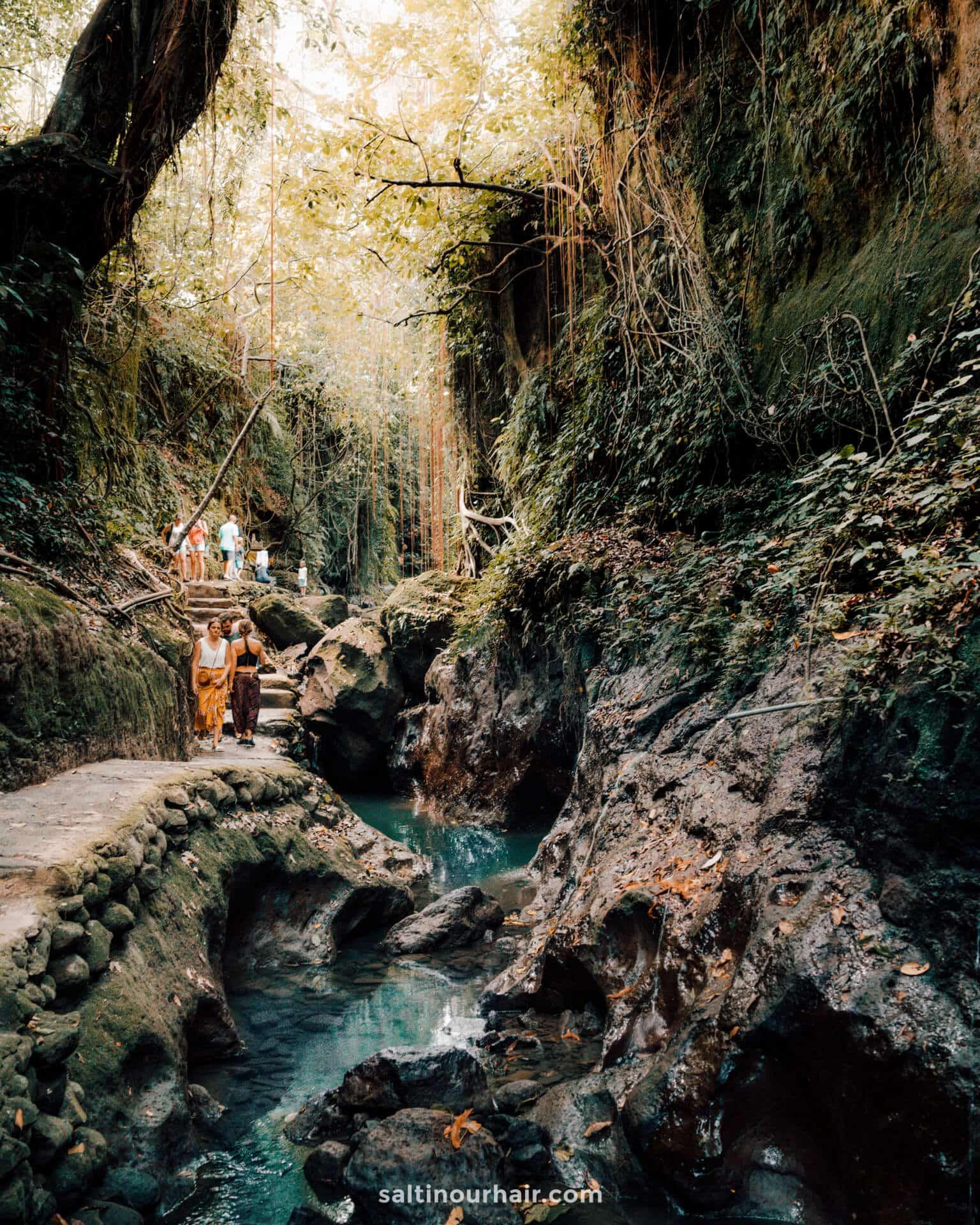Monkey forest bridge bali