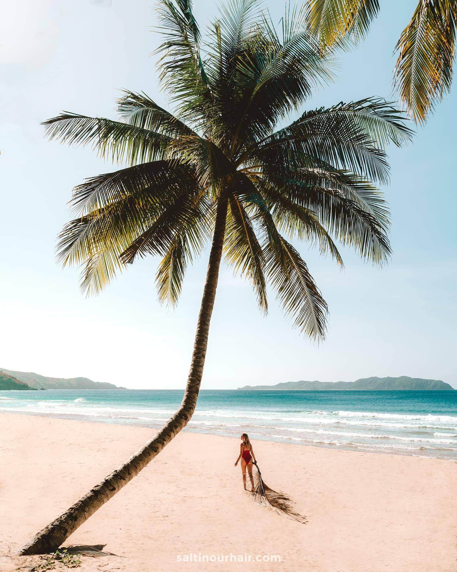 things to do el nido Duli Beach palm