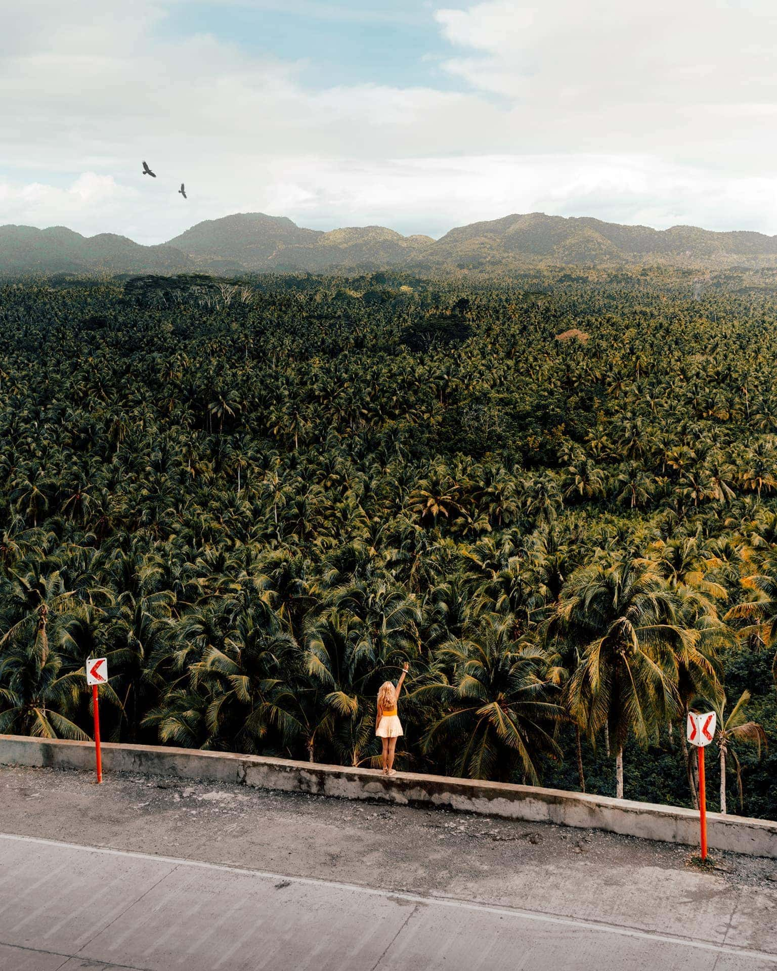 things to do siargao palm viewpoint