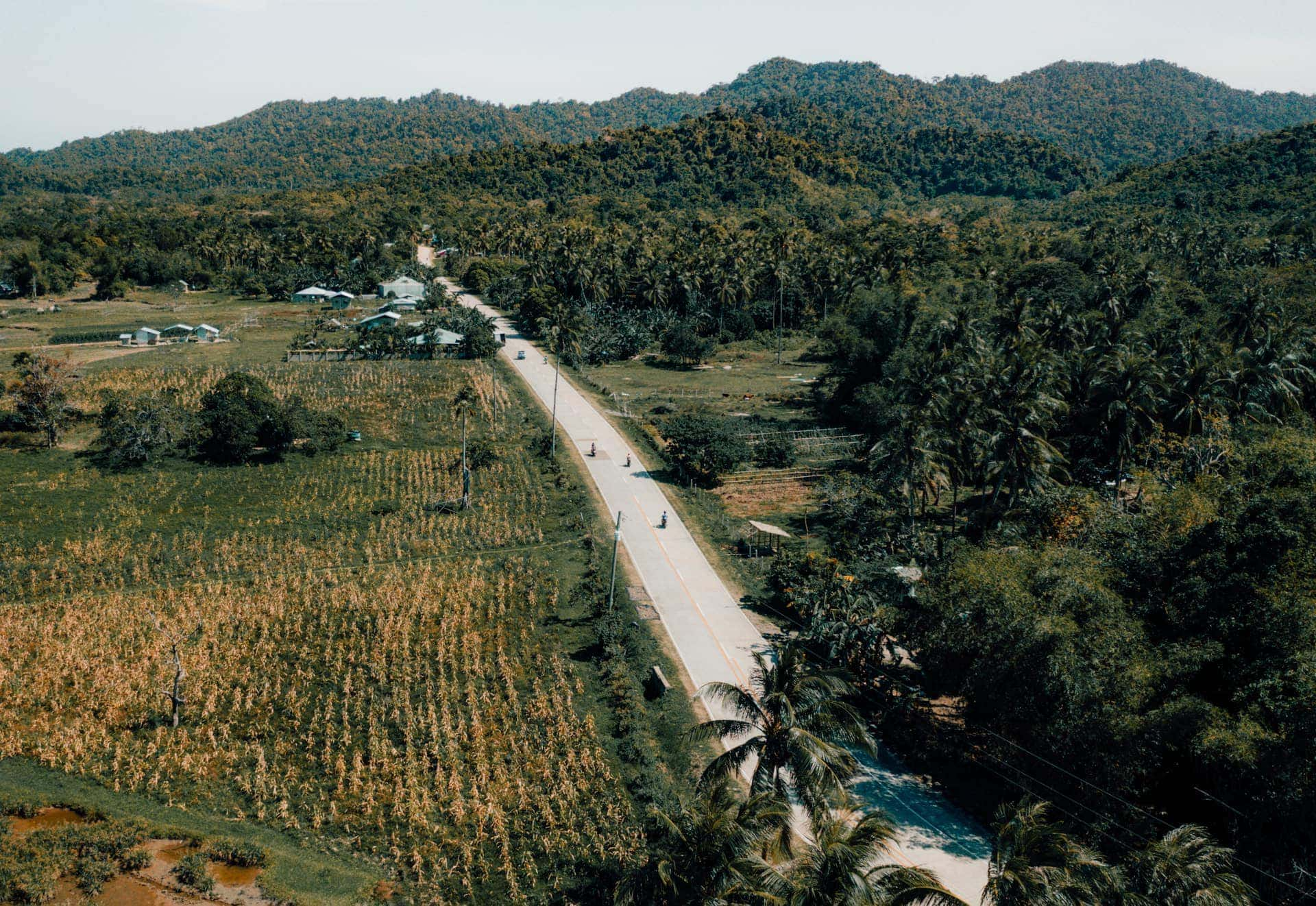 nacpan beach road palawan