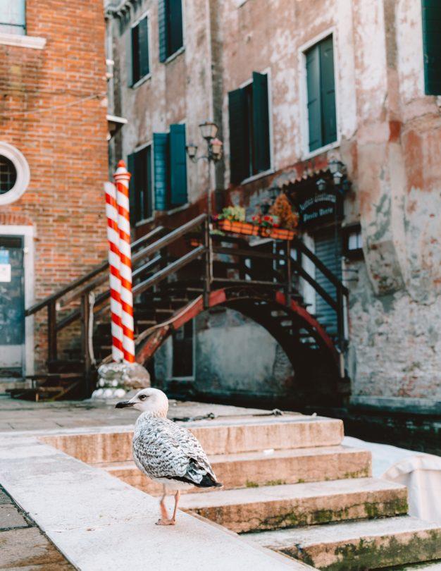 Venetië Italië straatbrug