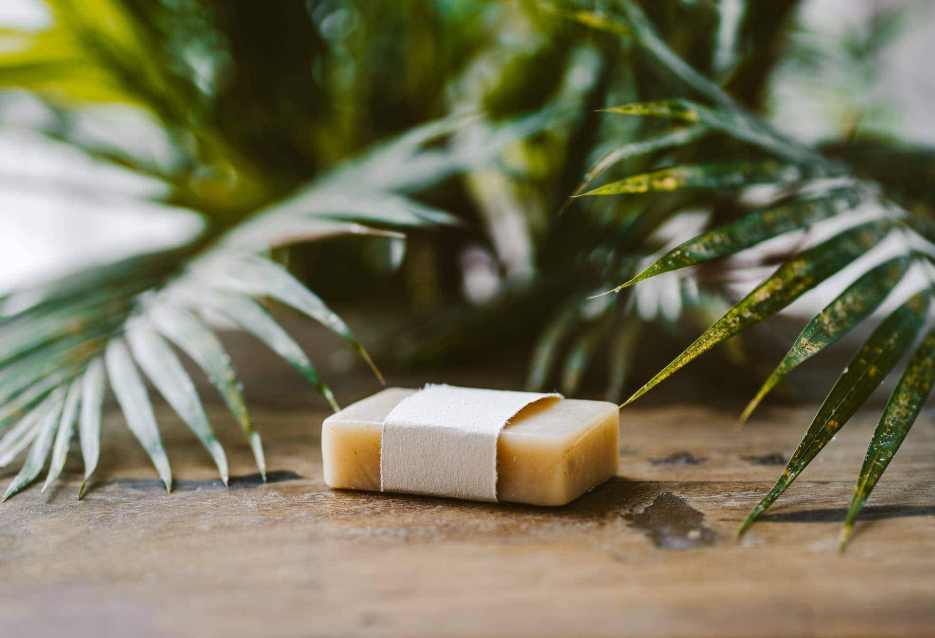 travel plastic free soap