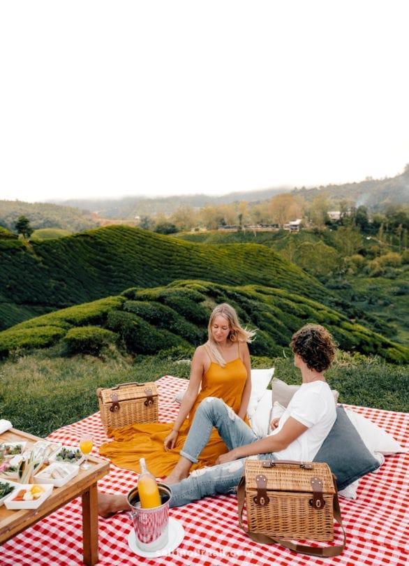 picnic tea plantations