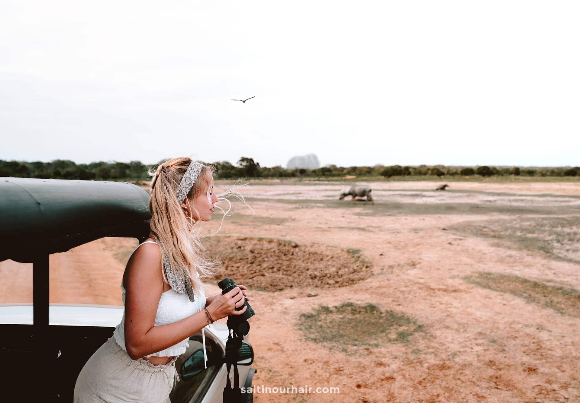 safari yala national park sri lanka