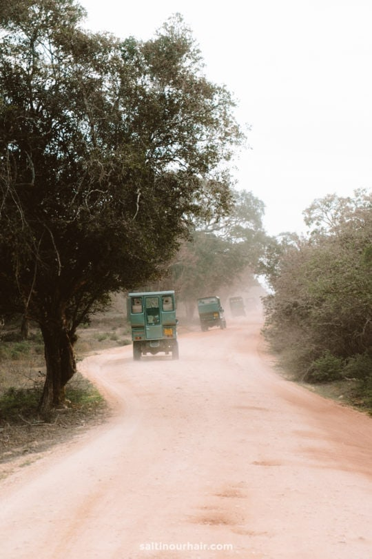 yala national park jeep safari sri lanka