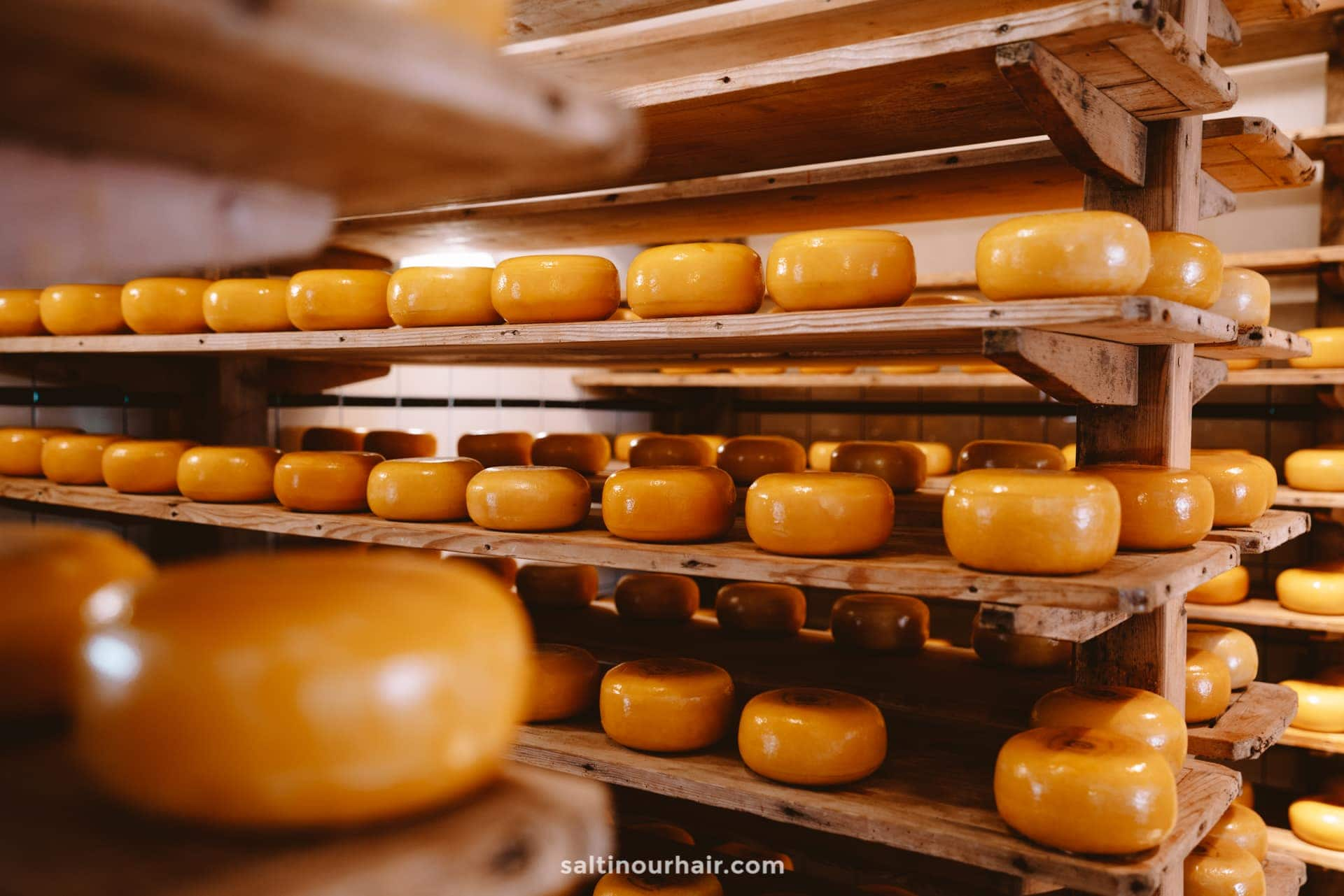 best dutch cheese
