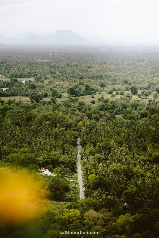 Yapahuwa Rock view