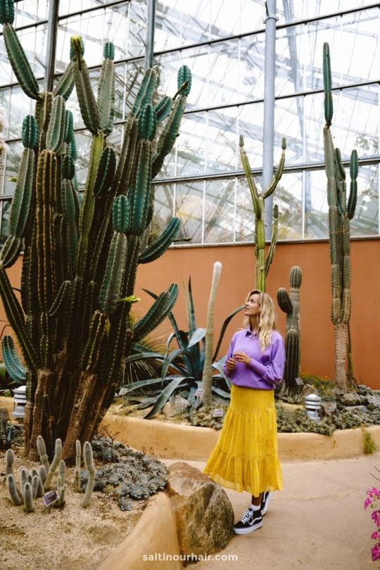 dingen te doen amsterdam Hortus Botanicus