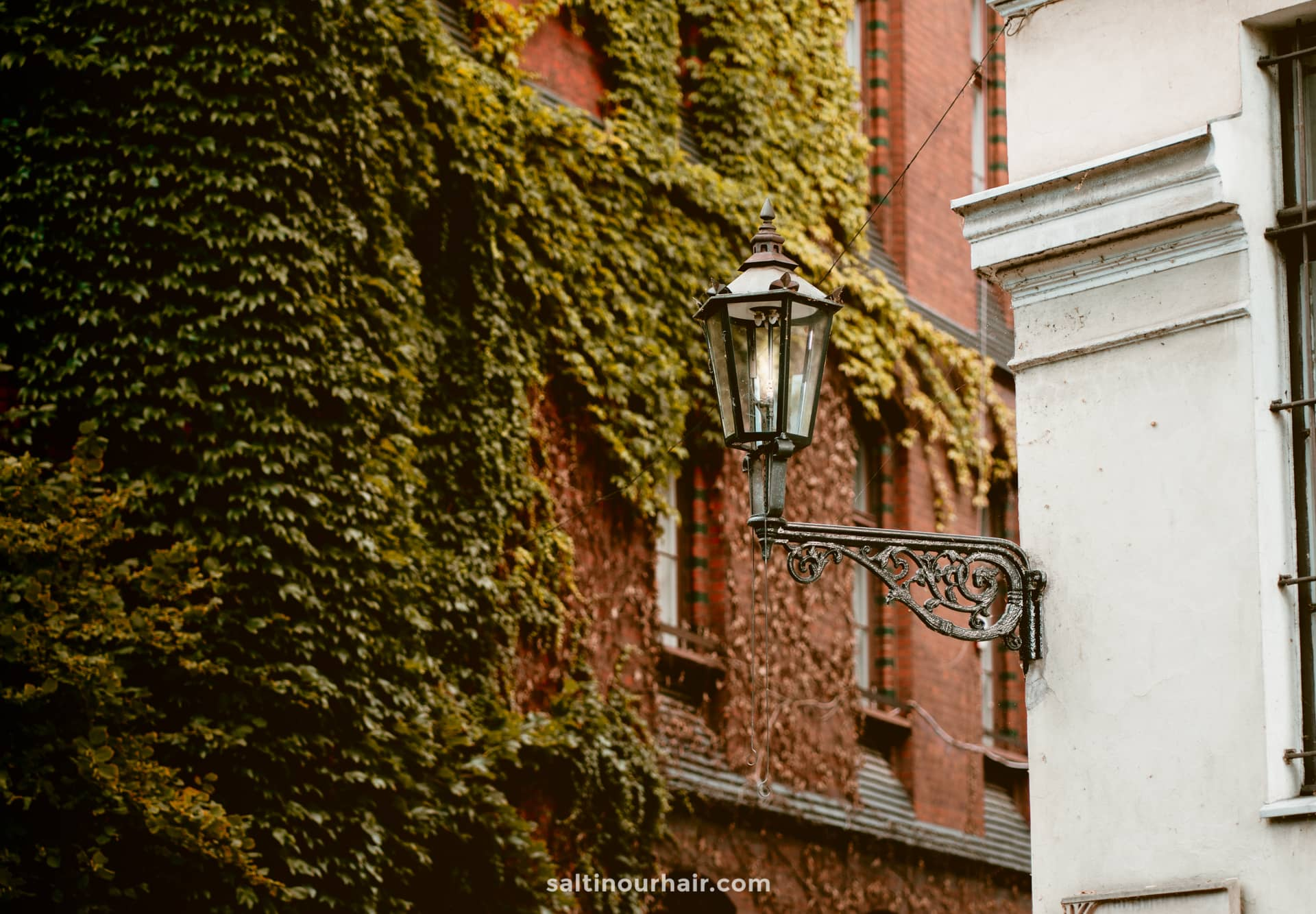 Lamplighter wroclaw