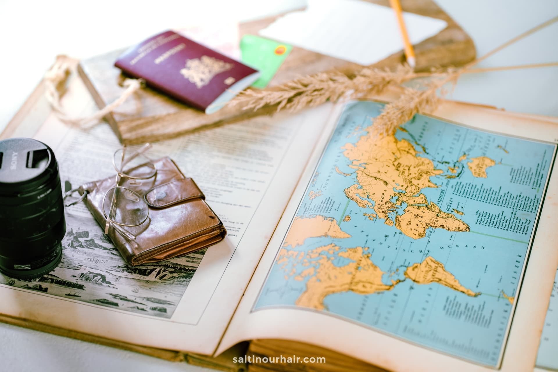 travel from home plan trips