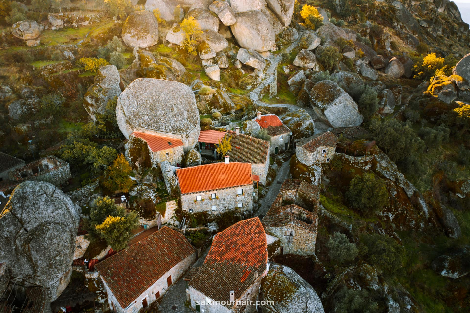 monsanto portugal rotsdorp