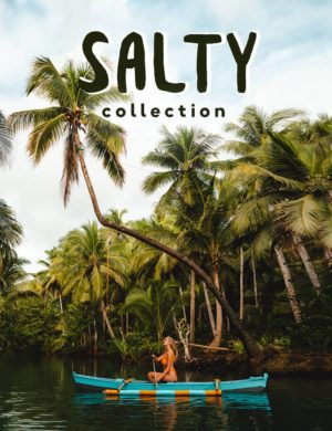 salt in our hair presets salty collection