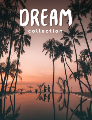 salt in our hair presets dream collection