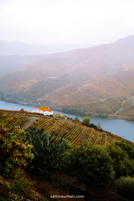 douro valley portugal viewpoint