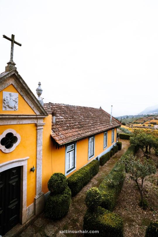 vineyards portugal