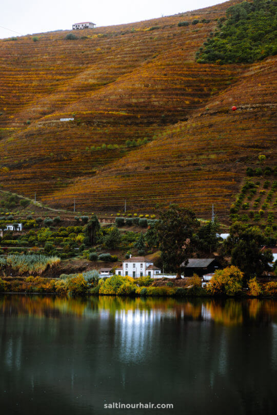 portugal travel guide douro valley