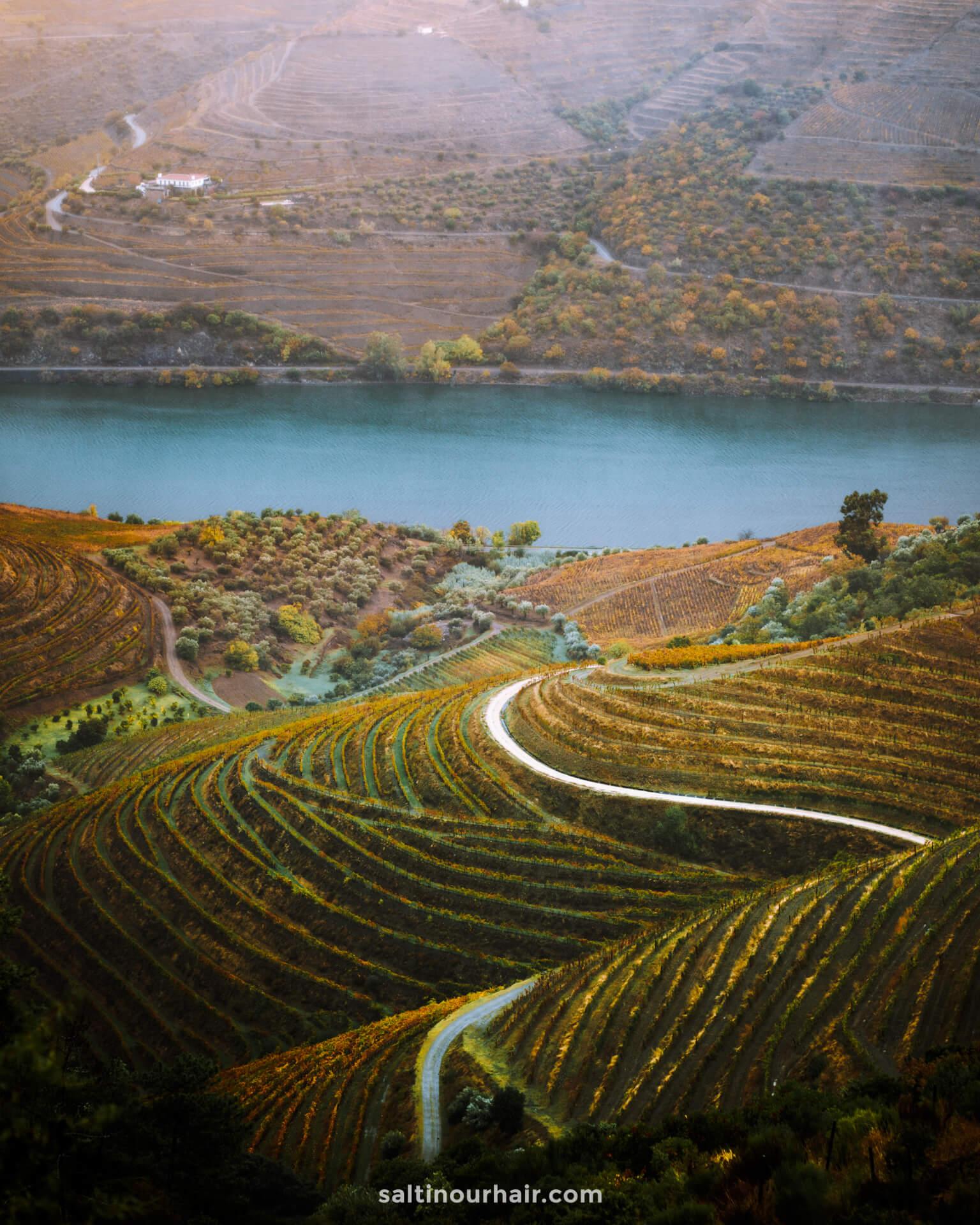 duoro vallei mooiste plekken in portugal wijn