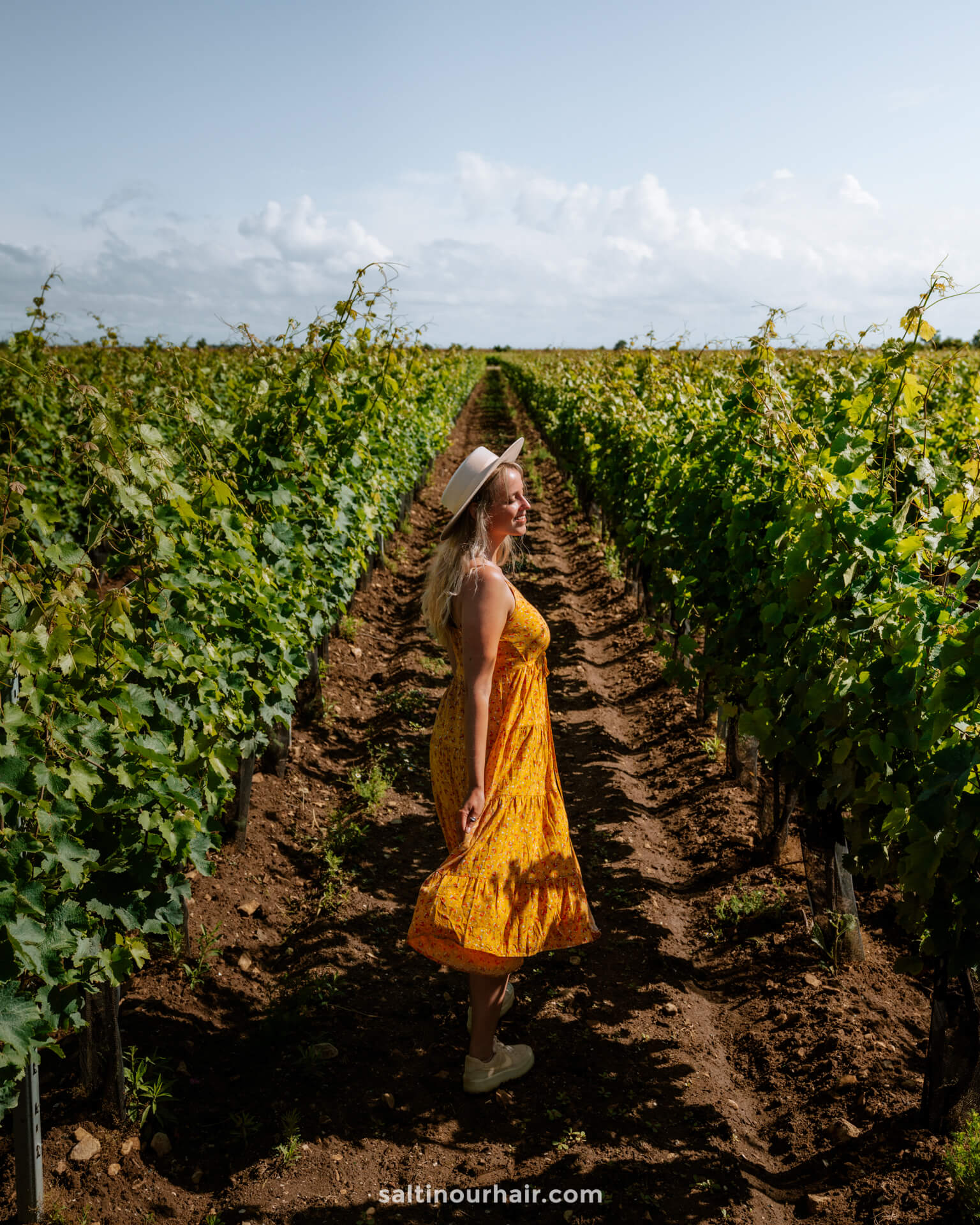 ile de re best things to do vineyards