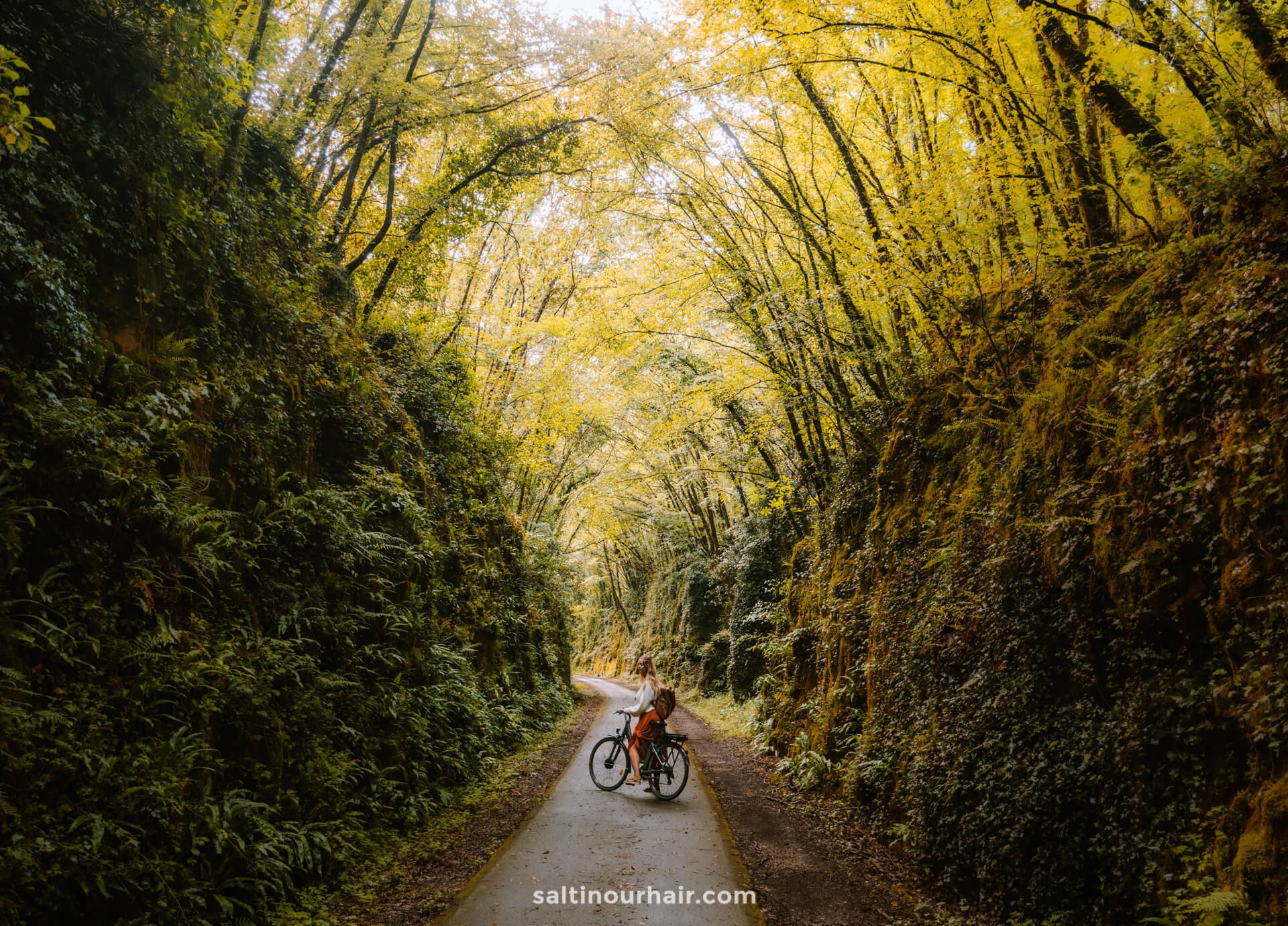 green lane dordogne valley